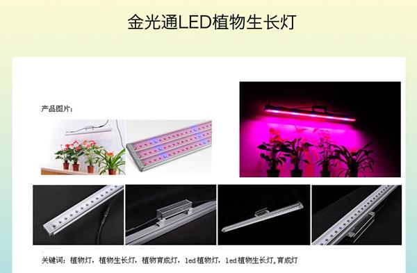 金光通LED植物生长灯